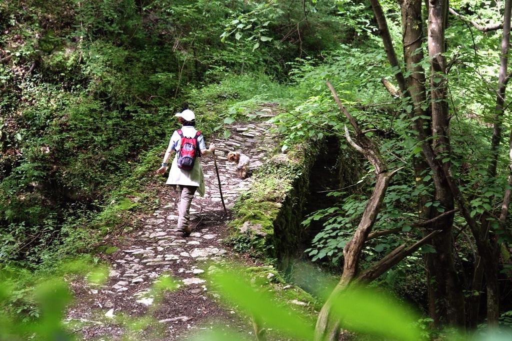 ponte sul Rio Ferraia tra Liguria e Piemonte in Val Pennavaire