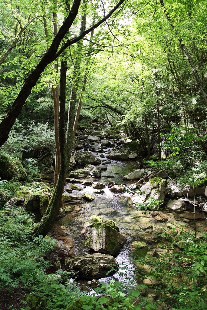 Rio Ferraia tra Liguria e Piemonte
