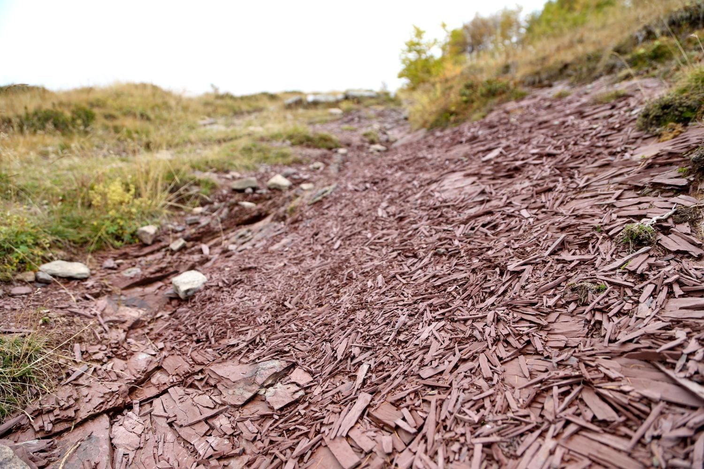 argilla rossa sul Bosco delle Navette